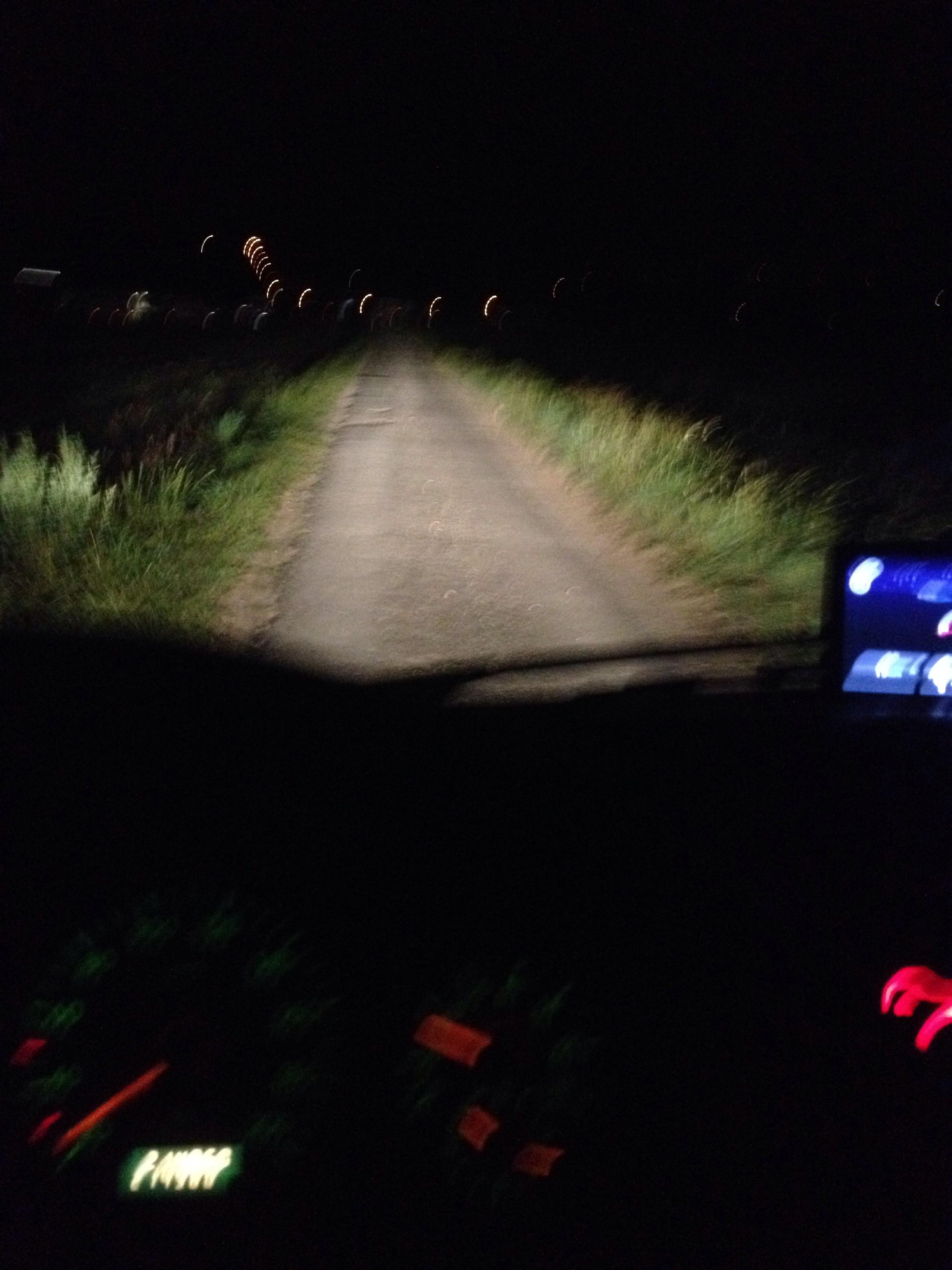 Der Weg zum Rennpark