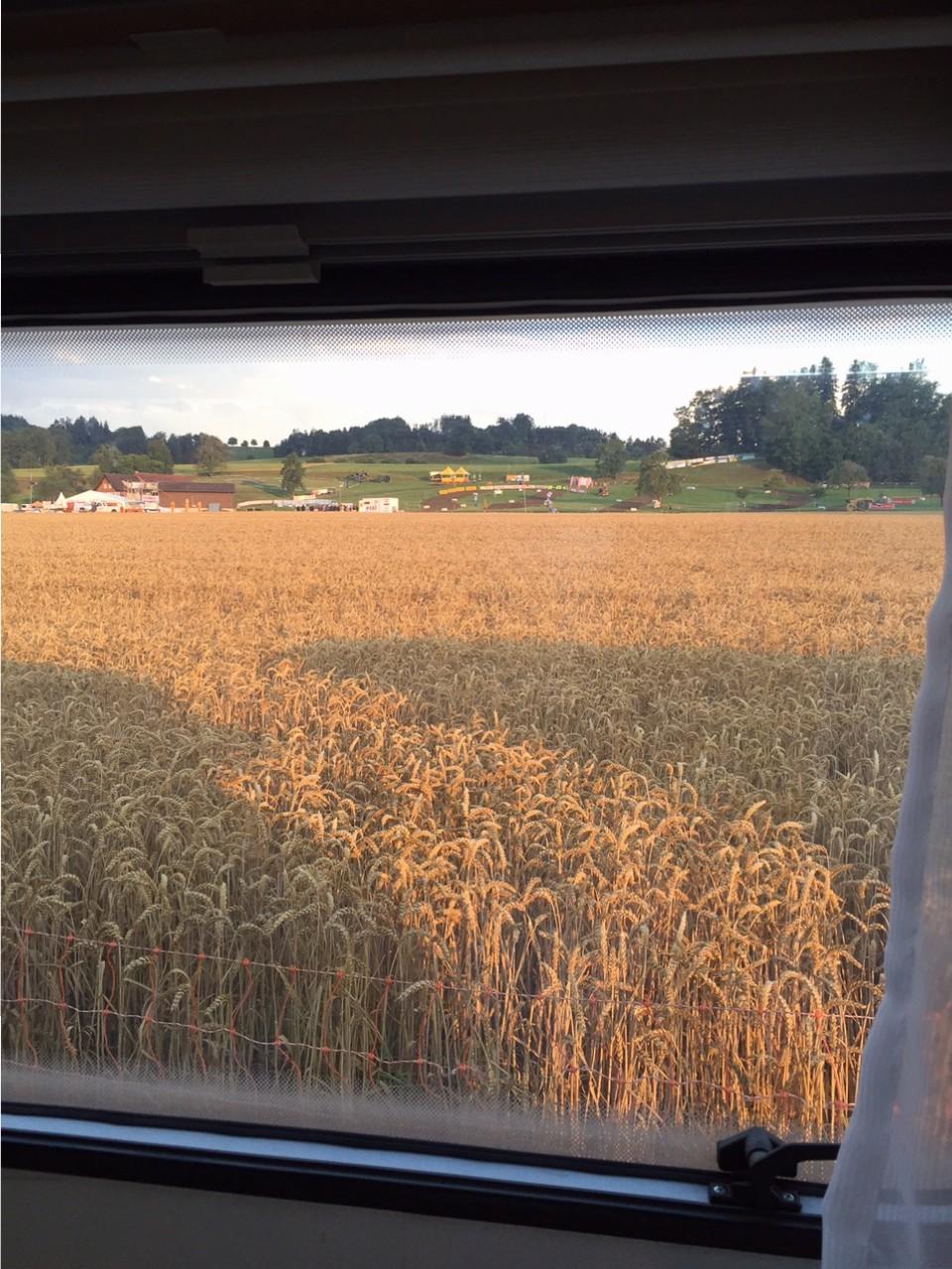 ein Wohnwagen im Kornfeld....